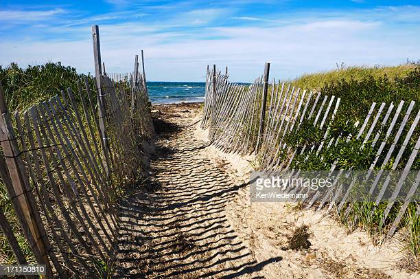Well Worn Path to the Beach