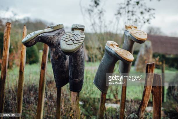 wellies rubber boots on a wooden stand - outdoor pursuit stock pictures, royalty-free photos & images
