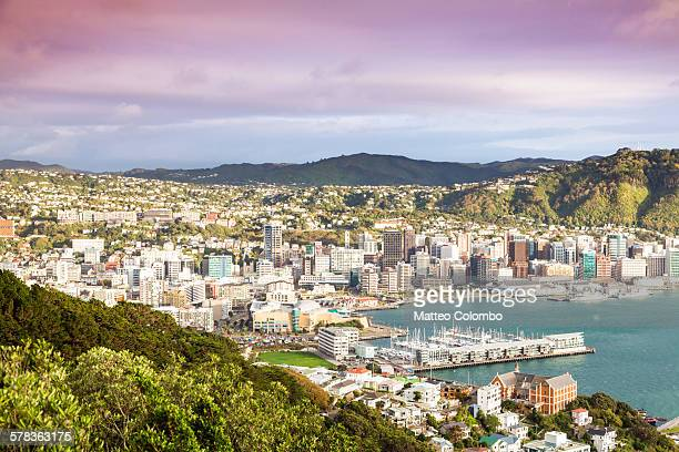 wellington city center and harbour at sunrise - wellington new zealand stock photos and pictures