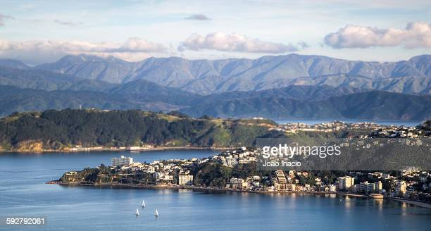 wellington city tilt-shift - wellington new zealand stock photos and pictures