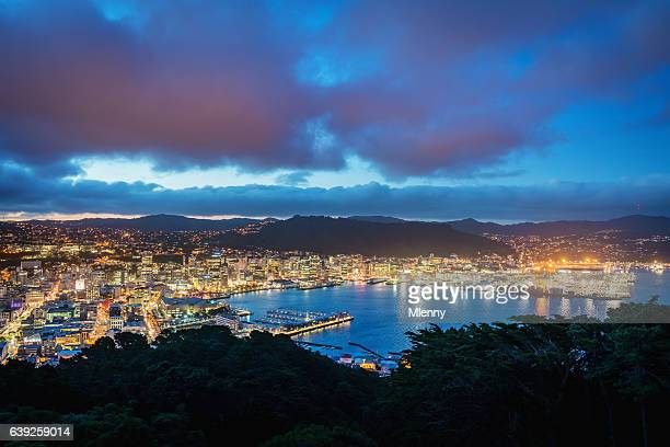 wellington cityscape new zealand twilight - wellington new zealand stock photos and pictures