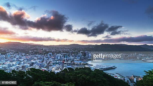 wellington cityscape panorama new zealand - wellington new zealand stock photos and pictures
