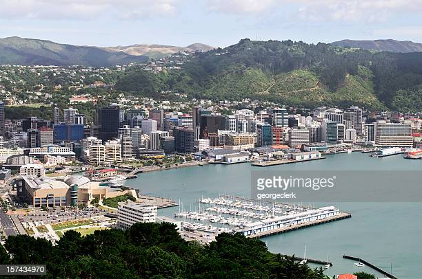 wellington cityscape - wellington new zealand stock photos and pictures
