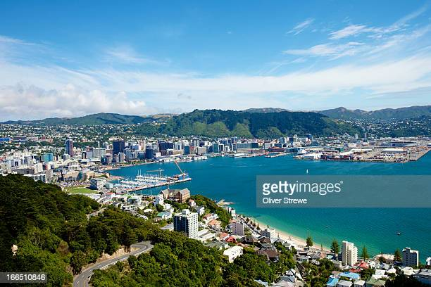 wellington harbour - wellington new zealand stock photos and pictures