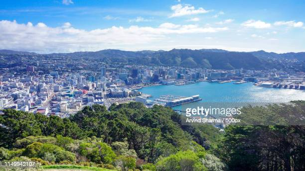 wellington in all its glory - wellington new zealand stock photos and pictures