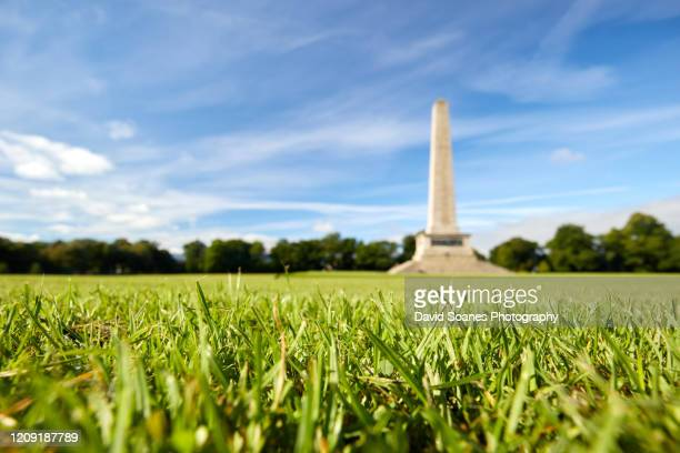 wellington monument in phoenix park, dublin, ireland - david soanes stock pictures, royalty-free photos & images
