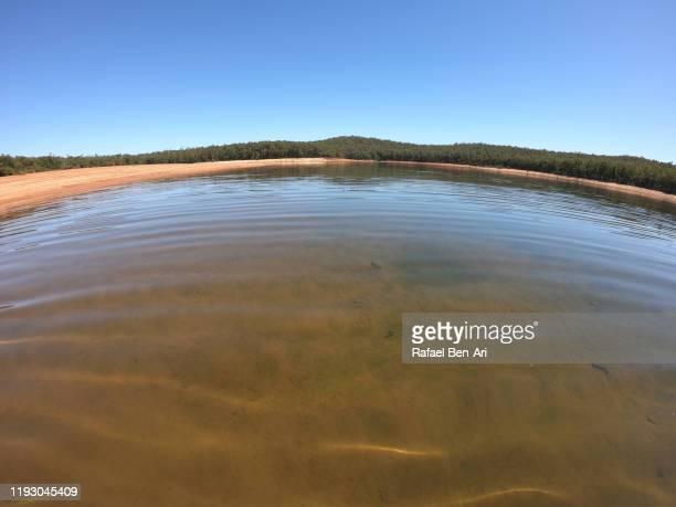 wellington reservoir in western australia - rafael ben ari stock-fotos und bilder
