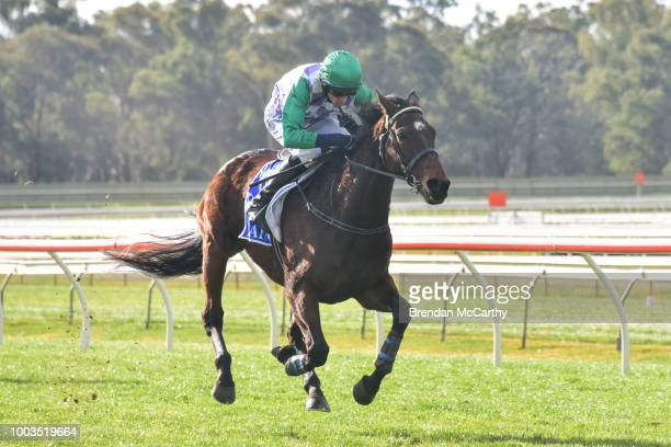 Wells ridden by Richard Cully wins the ECycle Solutions Mosstrooper Steeplechase at Bendigo Racecourse on July 22 2018 in Bendigo Australia