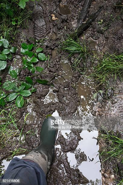 A welly stepping into a muddy footpath