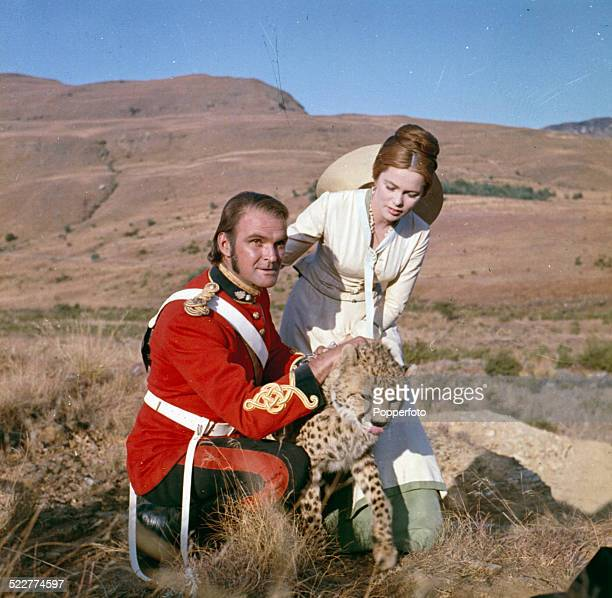 Welsh actor Stanley Baker dressed in character as Lieutenant John Chard with Swedish actress Ulla Jacobsson playing Margareta Witt and a cheetah on...