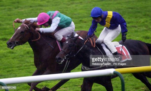 Welsh Border ridden by Richard Quinn wins the Lawdirect Conditions Stakes ahead of Turku and jockey Kevin Darley at Newmarket Races