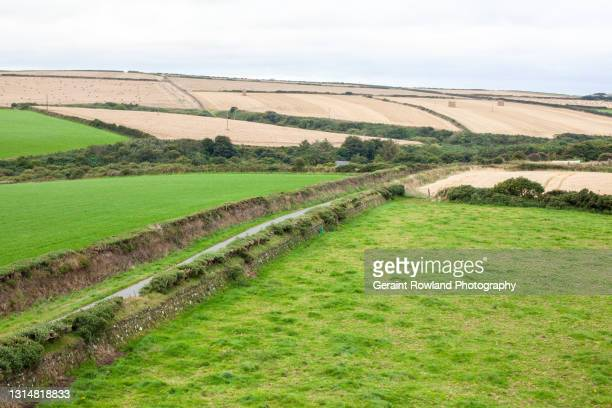 welsh countryside - geraint rowland stock pictures, royalty-free photos & images
