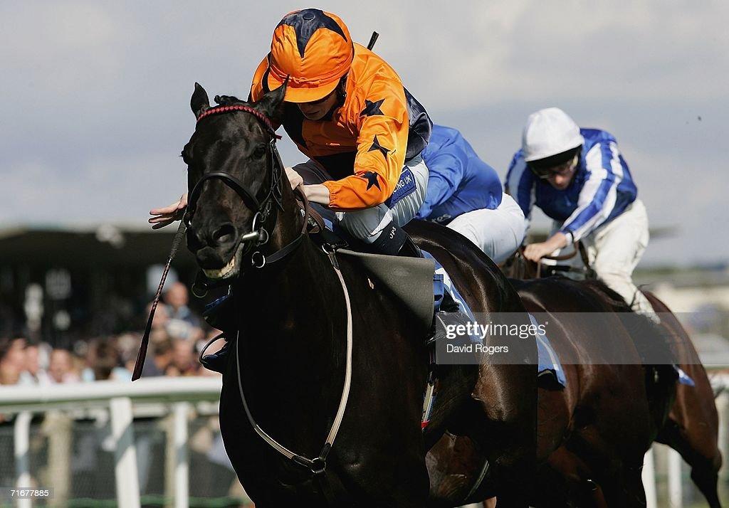 Newbury Races : News Photo