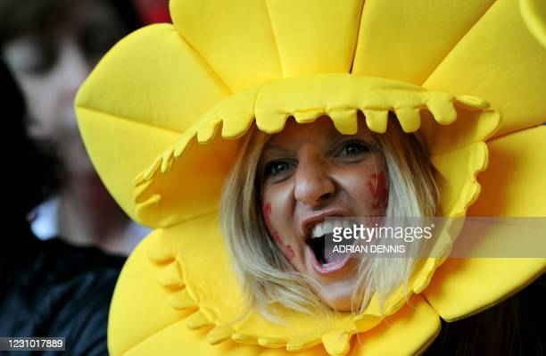 Welsh fan cheers as the teams run onto the field ahead of the Wales versus Italy RBS Six Nations International rugby union match at The Millenium...
