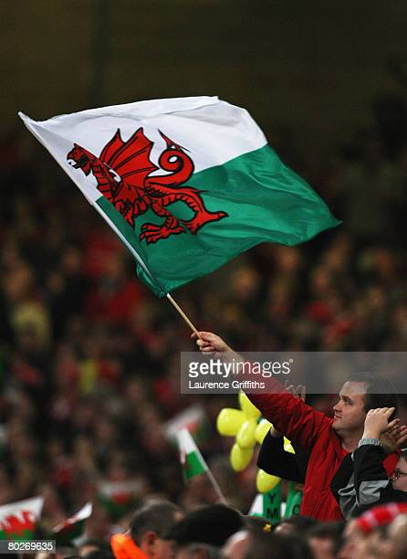 Welsh fan cheers on his team during the RBS Six Nations Championship match between Wales and France at the Millennium Stadium on March 15 2008 in...
