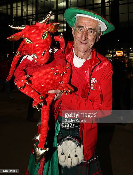 Welsh fan shows his support before the international test match between the Australian Wallabies and Wales at Suncorp Stadium on June 9 2012 in...