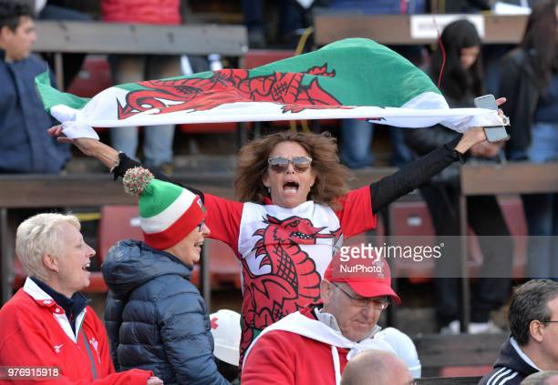 Welsh fans cheer for their team during the International Test Match between Argentina and Wales at the Brigadier Estanislao Lopez Stadium on June 16...