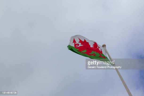 welsh glory - geraint rowland stock pictures, royalty-free photos & images