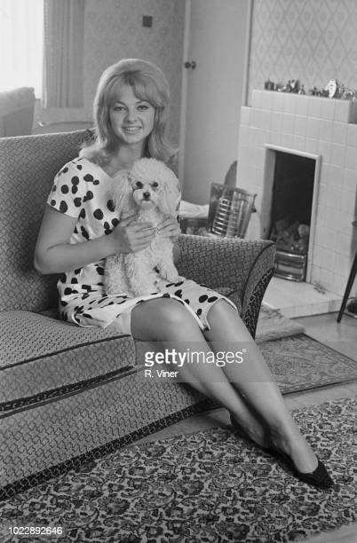 Welsh model and showgirl Mandy RiceDavies currently involved in the Stephen Ward court case and Profumo Affair pictured seated on a sofa with a...