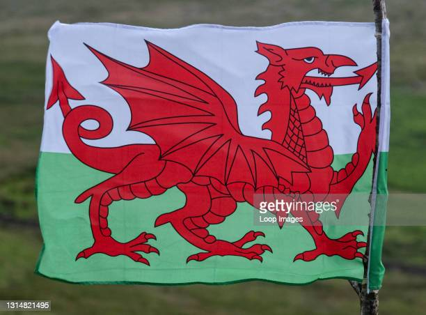 Welsh National Flag tied to a rustic pole in Snowdonia.