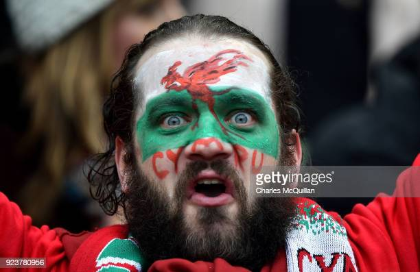 Welsh rugby fan is pictured during the Six Nations Championship rugby match between Ireland and Wales at Aviva Stadium on February 24 2018 in Dublin...