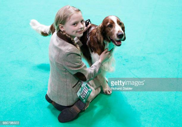 Welsh Springer Spaniel named Chanangel Nightwatchman at Kytreveglos stands with a young girl on day four of the Cruft's dog show at the NEC Arena on...