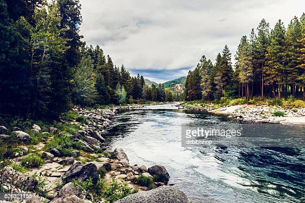 wenatchee river & forest near leavensworth, washington state - leavenworth washington stock photos and pictures