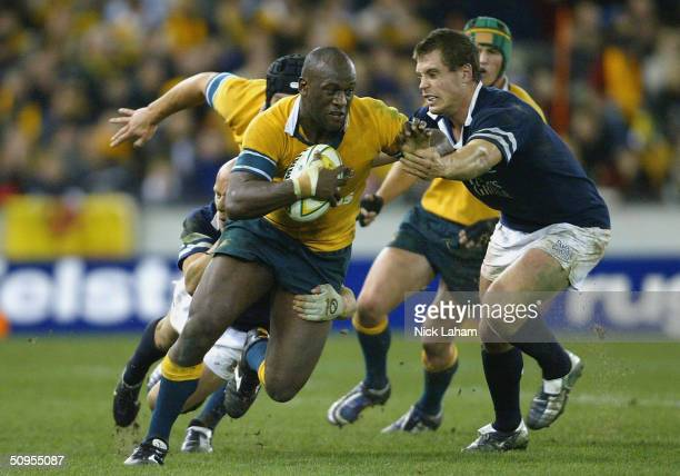 Wendell Sailor of the Wallabies is tackled by the Scotland defence during the Hopetoun Cup test match between the Australian Wallabies and Scotland...