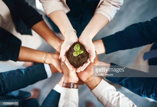 we're all responsible for creating a better tomorrow - seedling stock pictures, royalty-free photos & images