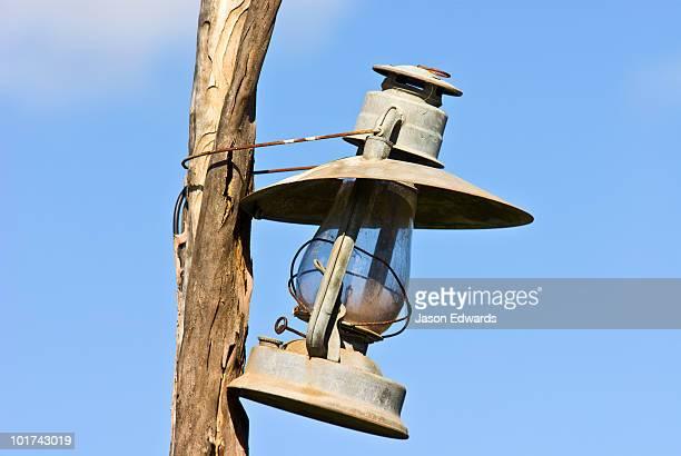 An antique kerosene lantern hanging from a tree branch.