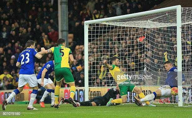 Wes Hoolahan of Norwich City scores his team's first goal during the Barclays Premier League match between Norwich City and Everton at Carrow Road on...