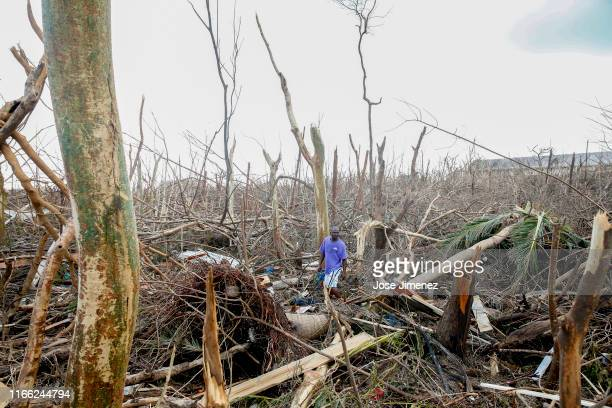 Wesley Joseph walks through fallen trees and debris on devastated Great Abaco Island on September 6 2019 in the Bahamas Hurricane Dorian hit the...