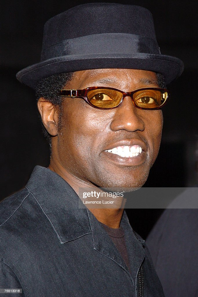Wesley Snipes at the 4th Annual Tribeca Film Festival - Vanity Fair Party at New York Supreme Court in New York City, New York.