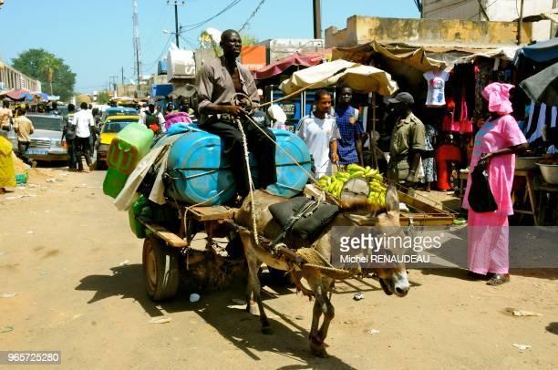 West Africa Senegal Sine Saloum Market Kaolack Afrique de l'Ouest Senegal Sine Saloum Le marche de Kaolack transport en charette