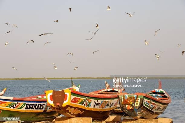 West Africa Senegal Sine Saloum Palmarin fishing port Afrique de l'ouest Senegal Sine Saloum Palmarin port de peche