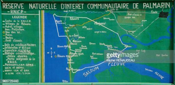 West Africa Senegal Sine Saloum Palmarin natural reserve Afrique de l'ouest Senegal Sine Saloum Palmarin reserve naturelle