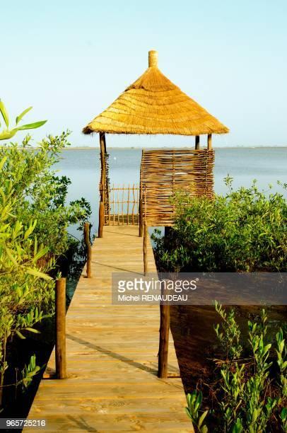 West Africa Senegal SineSaloum Souimanga Lodge Afrique de l'ouest Senegal SineSaloum Souimanga lodge