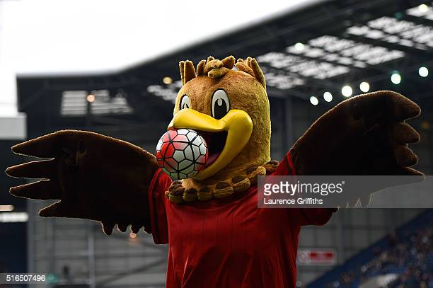 West Bromwich Albion mascot Albi holds the ball prior to the Barclays Premier League match between West Bromwich Albion and Norwich City at The...