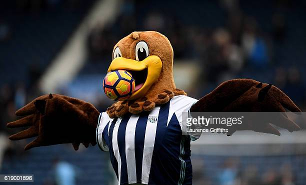 West Bromwich Albion mascot Baggie Bird holds a Premier League winter ball prior to the Premier League match between West Bromwich Albion and...