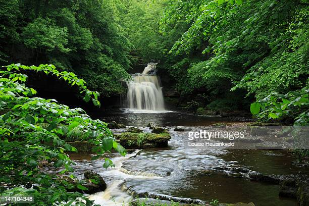 west burton falls, wensleydale - louise burton stock photos and pictures