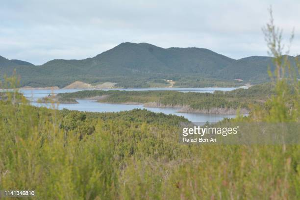 west coast range landscape tasmania australia - rafael ben ari - fotografias e filmes do acervo