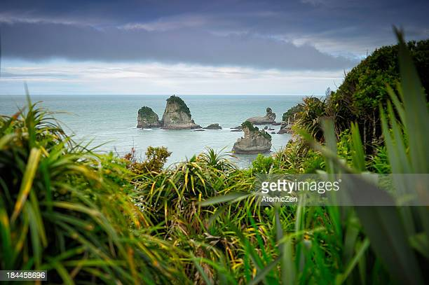 West Coastal, South Island, NZ