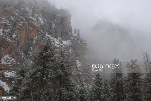west fork trail - oak creek canyon - arizona - oak creek canyon - fotografias e filmes do acervo