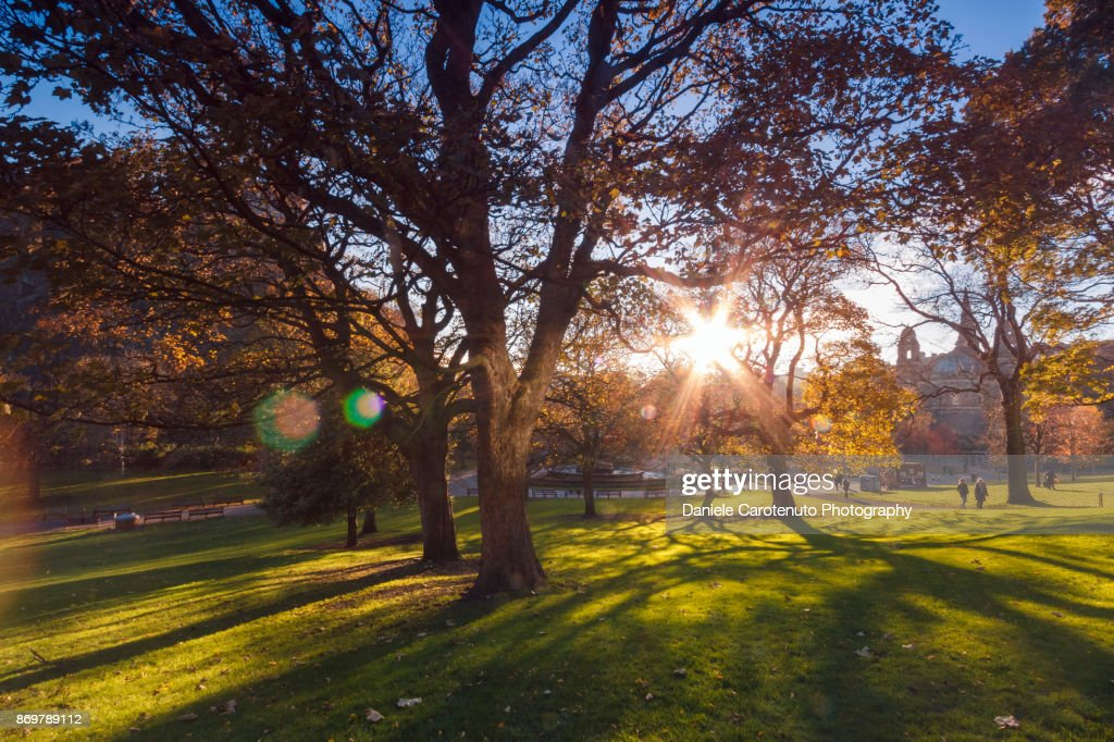 West Gardens : Stock Photo