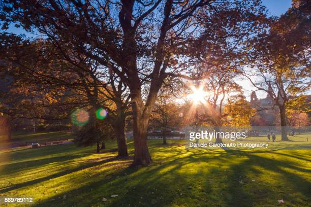 west gardens - daniele carotenuto stock pictures, royalty-free photos & images