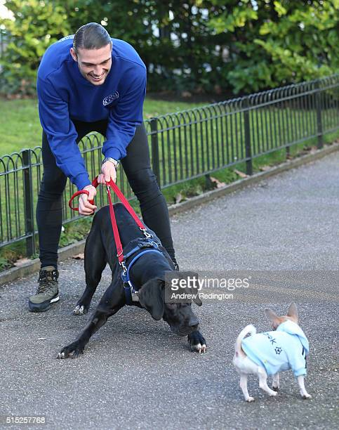 West Ham United and England striker Andy Carroll launched an appeal to find a loving family for the dog that stole his heart Buffy at Battersea Dogs...
