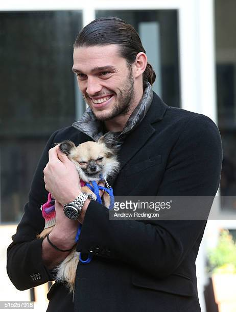 """KINGDOM – FEBRUARY West Ham United and England striker Andy Carroll showed that Staffordshire Bull Terriers are naturally a """"loyal lovely family pet""""..."""