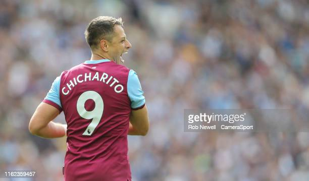 West Ham United's Javier Hernandez celebrates scoring his side's first goal during the Premier League match between Brighton Hove Albion and West Ham...