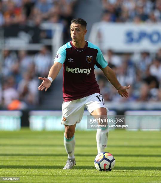West Ham United's Javier Hernandez during the Premier League match between Newcastle United and West Ham United at St James Park on August 26 2017 in...