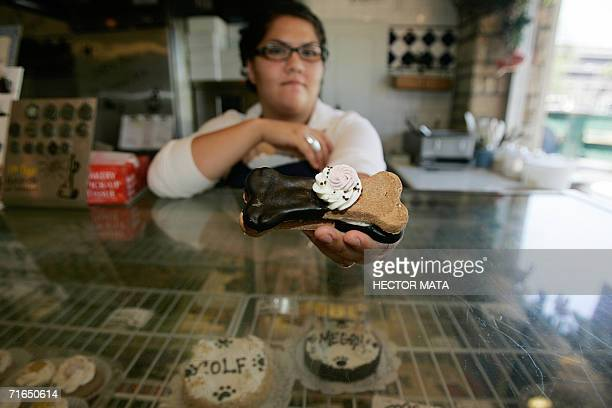 Baker Cristina Gonzales displays a popular cookie at The Pet Bakery in West Hollywood CA 14 August 2006 A thriving pet pampering industry in Los...
